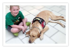 Service Dogs - Service Dog Training